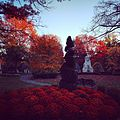 Mount Auburn Cemetery in Fall.jpg