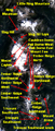 Mount Cayley volcanic field NASA.png