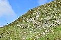 Mount Ibuki hiking, Shiga Prefecture; September 2019 (07).jpg