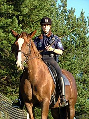 A mounted police officer in Helsinki.