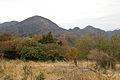 Mt.Hirugatake 26.jpg