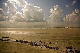 Mudflat and clouds in Sundarbans.jpg