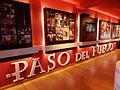 Museo del paso del fuego san pedro manrique.JPG