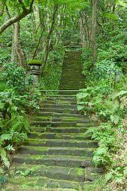 Myohoji-Kamakura-Moss