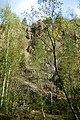 NSG Steinbruch Holzmühle (105).jpg