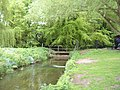Narborough Trout Farm footbridge - geograph.org.uk - 422074.jpg