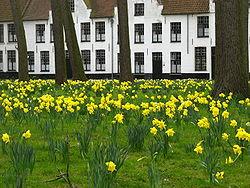 Lista del Patrimonio Mundial. 250px-Narcissen,_Begijnhof,_Brugge