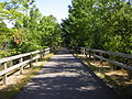 Nashua River Rail Trail 3.JPG