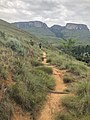 Natal Drakensberg National Park mountains.jpg