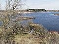 Nationaal Park Kennemerland (27498296418).jpg