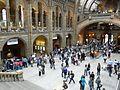 Natural History Museum, London (1).jpg