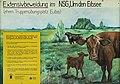 """Naturschutzgebiet """"Um den Eibsee"""" bei der Euba (Chemnitz)..2H1A8614WI.JPG"""