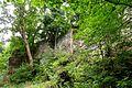 Naturschutzgebiet Saupark - Kleiner Deister - Felsformation der oberen Jura (Korallenoolith) (10).jpg