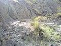 Navidhand Valley, Khyber Pakhtunkhwa, Pakistan - panoramio (165).jpg