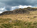 Nell's Pike Quarry - geograph.org.uk - 496118.jpg