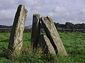 Neolithic Standing Stones at Newton Farm - geograph.org.uk - 258829.jpg