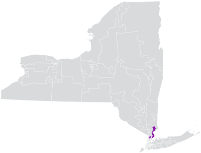 New York State Senate District 37 (2012).png