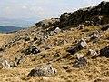 Newbiggin Crags - geograph.org.uk - 1083541.jpg