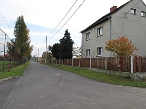 Gmina Ujazd, Opole Voivodeship - House in Niezdrowice