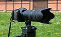 Nikon D3100 & AF-S Nikkor 70-200mm 1-2,8G ED VR II 02.jpg