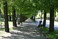 Norra promenaden Norrköping 2008-05-10 bild04.jpg