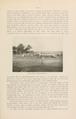 NovitatesZoologicae18 459.png