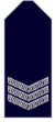 Nsw-police-force-sergeant.png