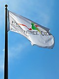 Official Peachtree City flag in Peachtree City, Georgia.jpg