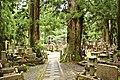Okuno-in cemetery, Koyasan (3810188543).jpg