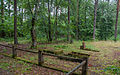 Old German cemetery2.jpg