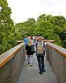 On the Treetop Walkway, Kew Gardens.jpg