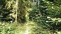 Opawskie Mountains, 2020.09.19 02.jpg