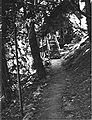 Oregon Caves NM - Trail to Guides Dormitory.jpg