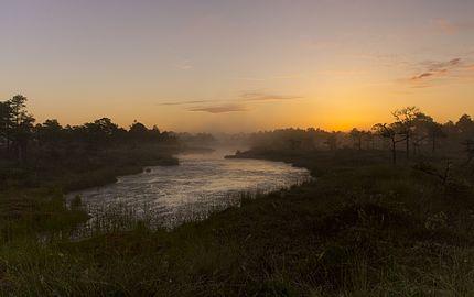 Päikesetõus Seli soos.jpg