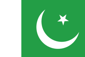 Pakistan flag 300.png