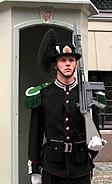 Palace guard at the royal palace, Oslo