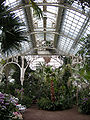 Palm house (Schönbrunn) central part from N-edge 20080212.jpg