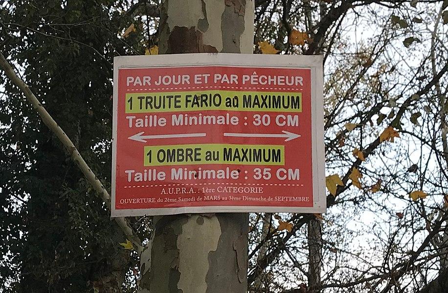Mollon (Villieu-Loyes-Mollon, Ain, France).