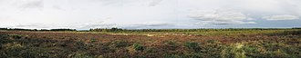 Battle of Culloden - Panorama of the battlefield, circa 2007. The flag on the left side indicates the Jacobite lines, the flag on the right side shows the location of the government lines.