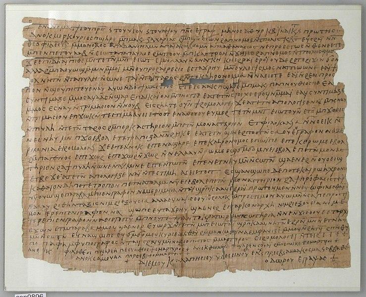 papyrus - image 9