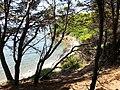 Parco del Cilento Punta Licosa.jpg