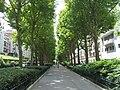 Paris 14e - avenue René-Coty - allée centrale.JPG