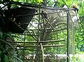 Parque Zoobotânico do Museu Paraense Emílio Goeldi-10.jpg