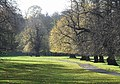 Path, Wollaton Park - geograph.org.uk - 280866.jpg