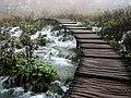 Path in Plitvice - Flickr - xiian.jpg