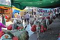Pavagadh, donkeys (9840099266).jpg
