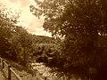 Paysage champêtre à Grigny.jpg