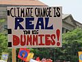 "People's Climate March 2017 in Washington DC 21 - Sign, ""Climate change is real, you big dummies!"".jpg"