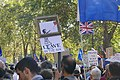 People's Vote March For The Future (30596411507).jpg