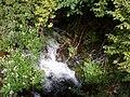 Pequeña cascada en el arroyo de Solan de Cabras.JPG